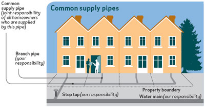 Common supply pipe